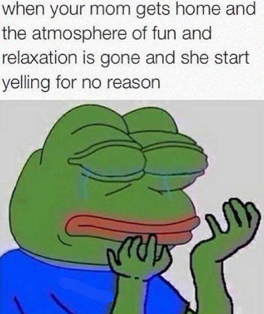 funny-sad-frog-mom-home
