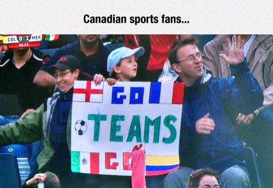 funny-sign-cheering-team-different-flags