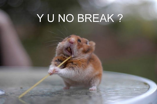 Break already!