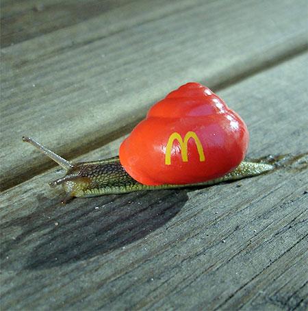 McDonald's Snail