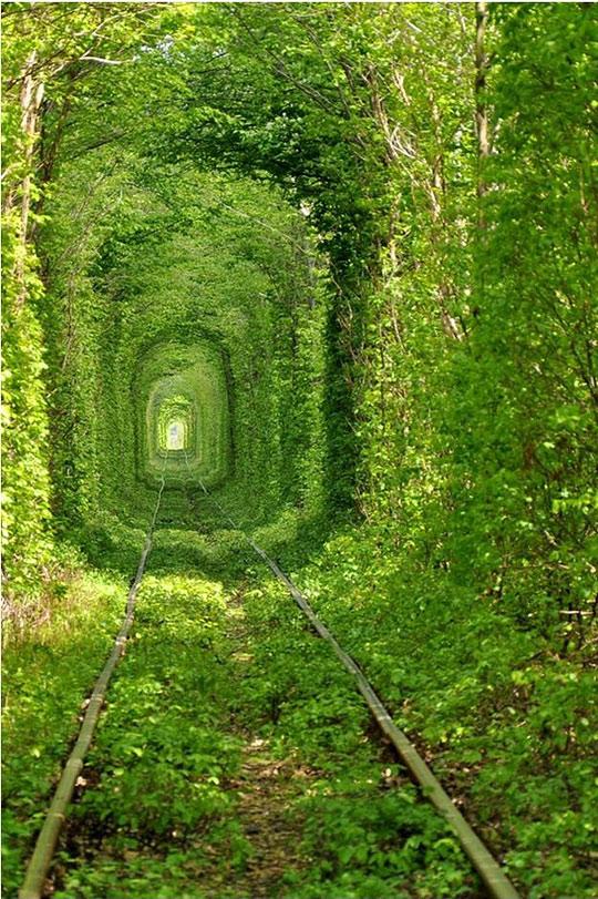 Trainway to heaven