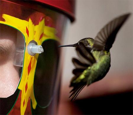 Wearable Hummingbird Feeder2
