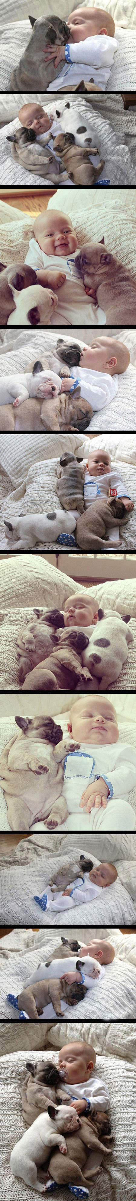 You won't be able to handle all this cuteness…