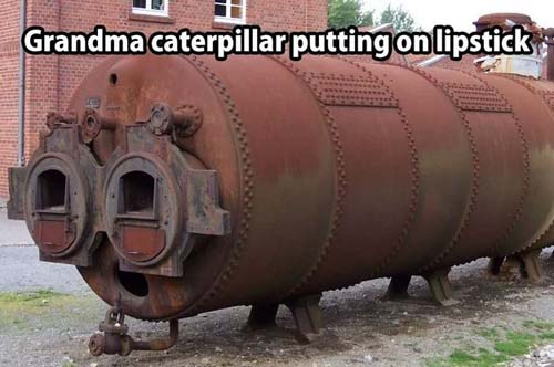 cannot-unsee-caterpillar-grandma