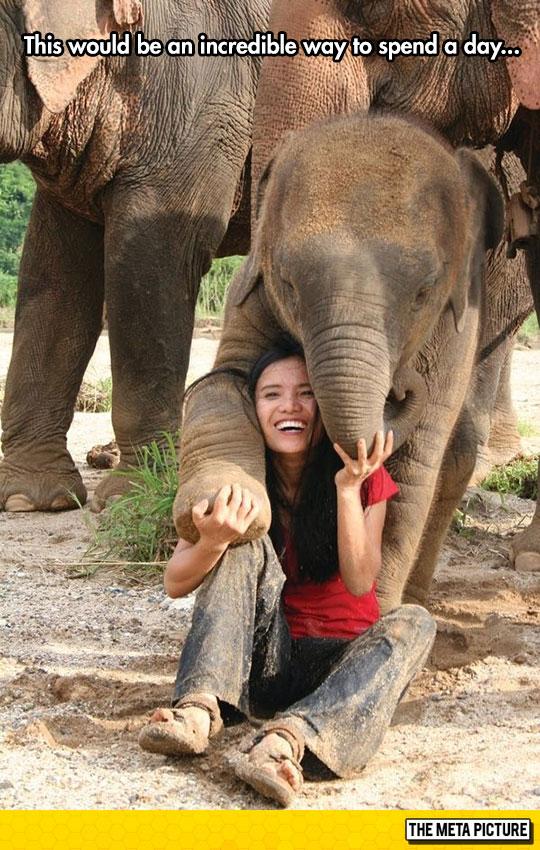 cute-girl-playing-little-elephant