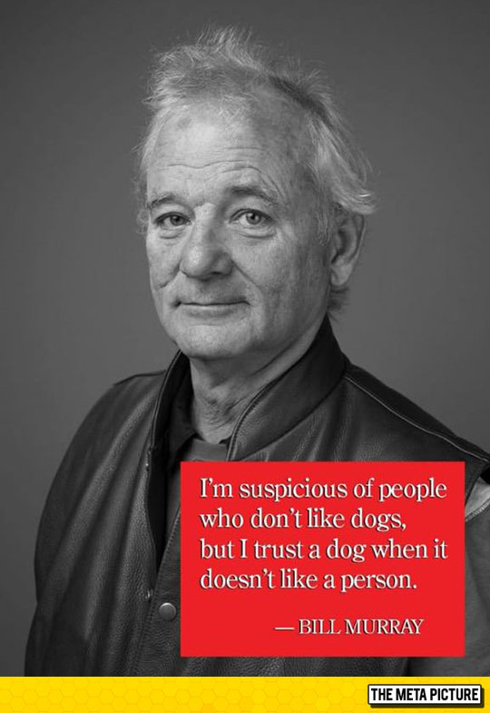 funny-Bill-Murray-quote-dog-people