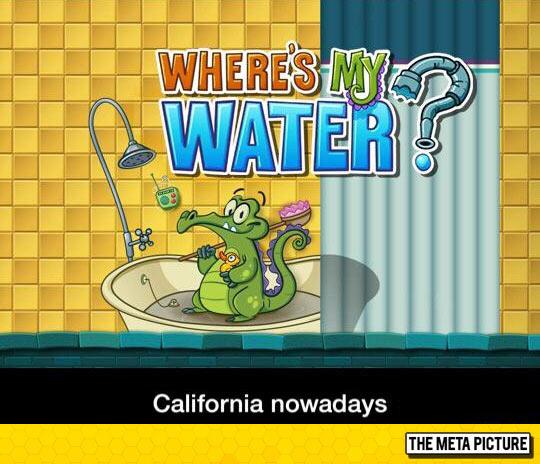 funny-California-water-problem-lizard-tub