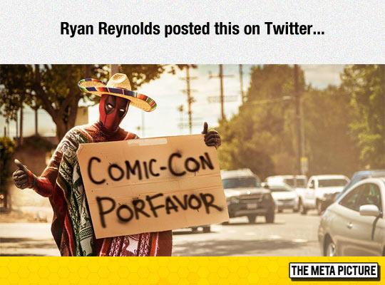 To Comic-Con, Muchas Gracias