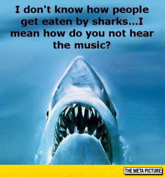 funny-Jaws-shark-attack-music