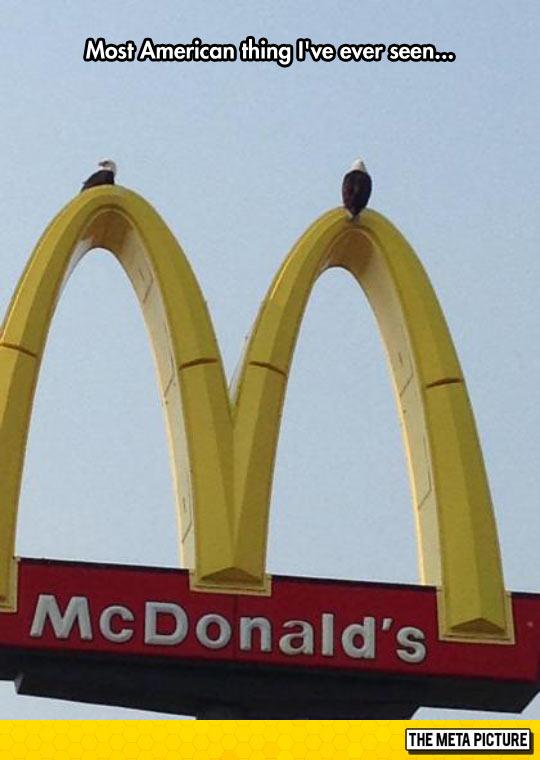 funny-McDonalds-hawk-America-symbols