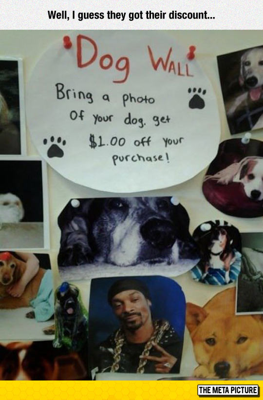 funny-Snoop-Dogg-pictures-dog-discount
