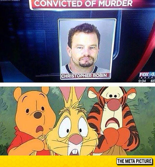funny-Winnie-Pooh-Christopher-Robin-convicted