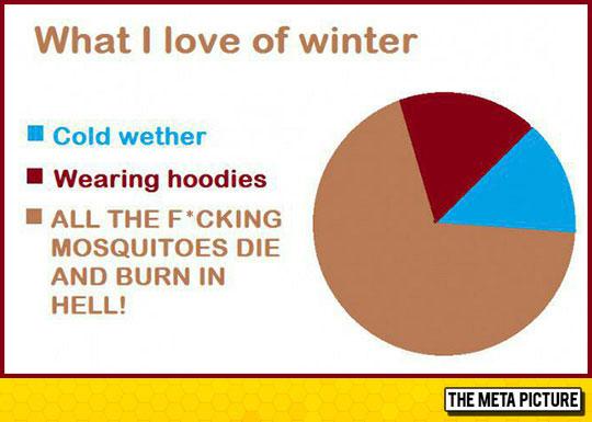 I Will Always Prefer Winter