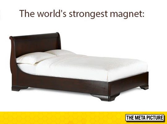funny-bed-strong-magnet-quote