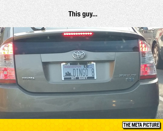 funny-car-license-plate-song-lyrics