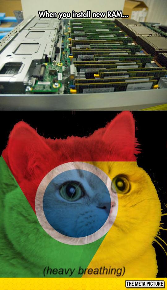 Chrome Loves It
