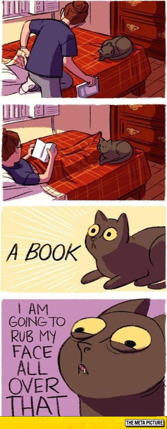 funny-cat-book-reaction-comic