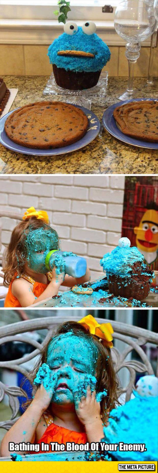 No More Cookie Monster