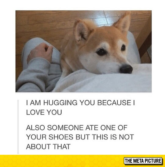 This Is A Honest Hug
