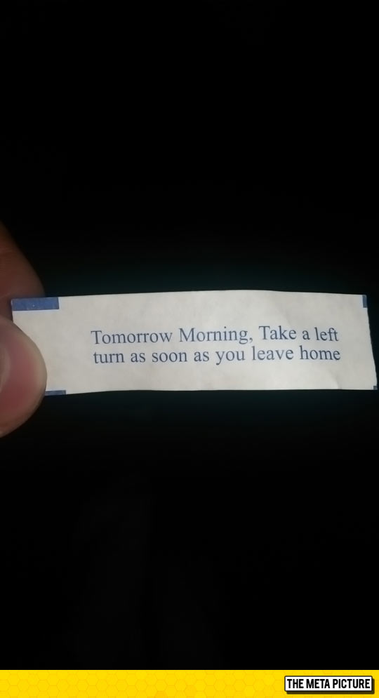 funny-fortune-cookie-advice