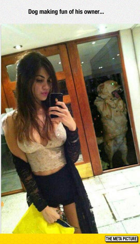 funny-girl-selfie-dog-owner