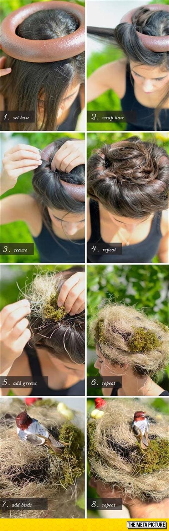 funny-hairstyle-nest-bird-grass