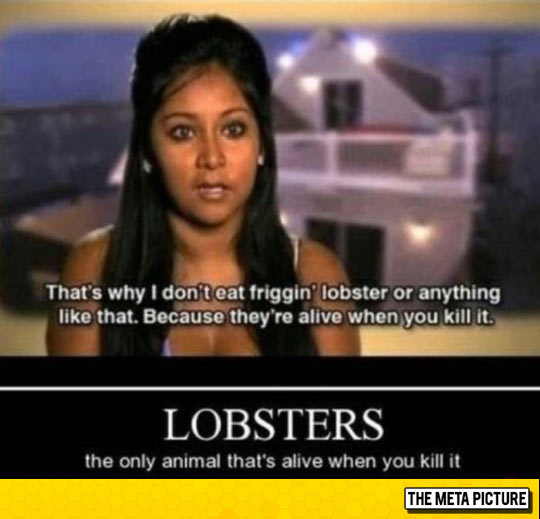 funny-lobster-alive-eating-girl