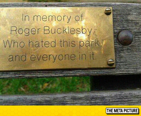 funny-park-bench-memory