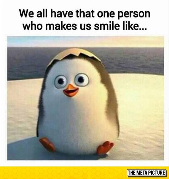 funny-person-penguin-make-laugh