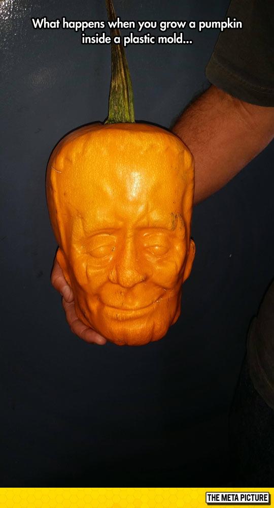 funny-pumpkin-Frankenstein-face-mold