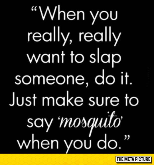 funny-slap-someone-mosquito-advice
