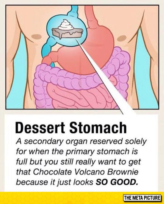 funny-stomach-dessert-secondary-organ