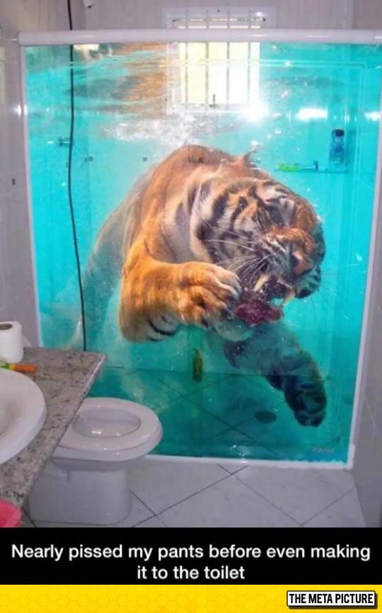 funny-tiger-curtain-bath-shower