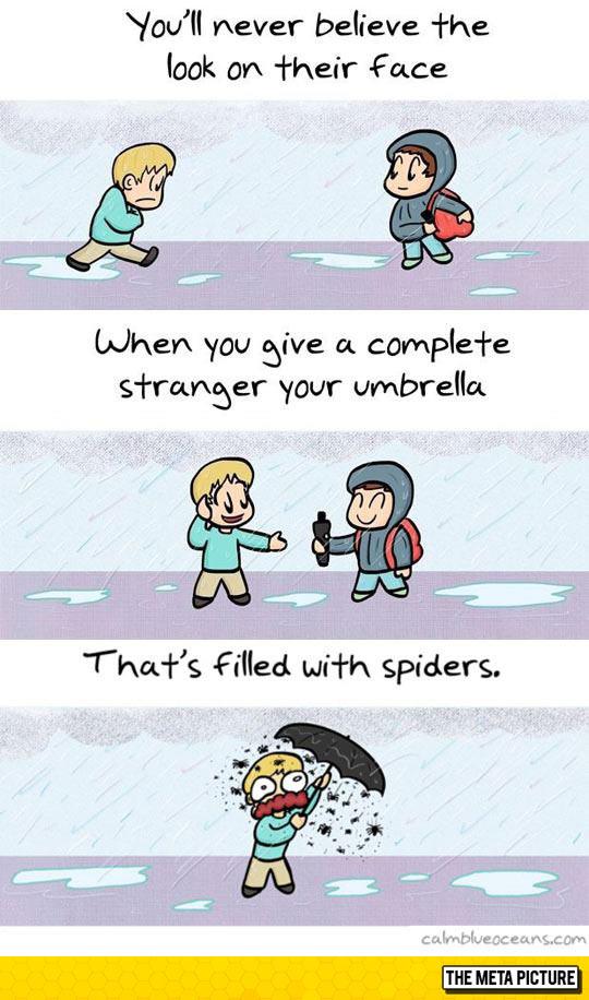 funny-umbrella-filled-spider-stranger-rain