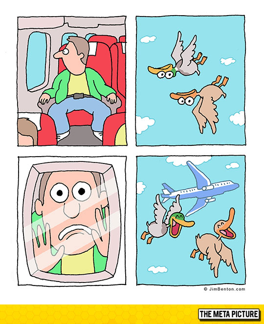 funny-webcomic-ducks-flying-upside-down