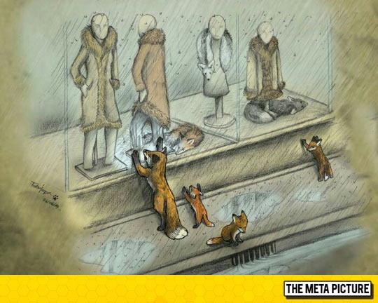 funny-window-showcase-fox-family