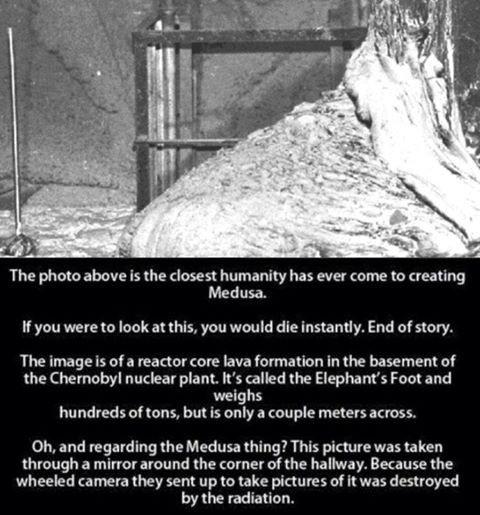 3. Real Medusa
