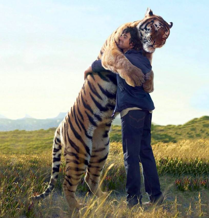 Sometimes all you need is a hug.