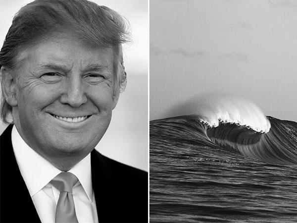 Things-Donald-Trump-looks-like-03