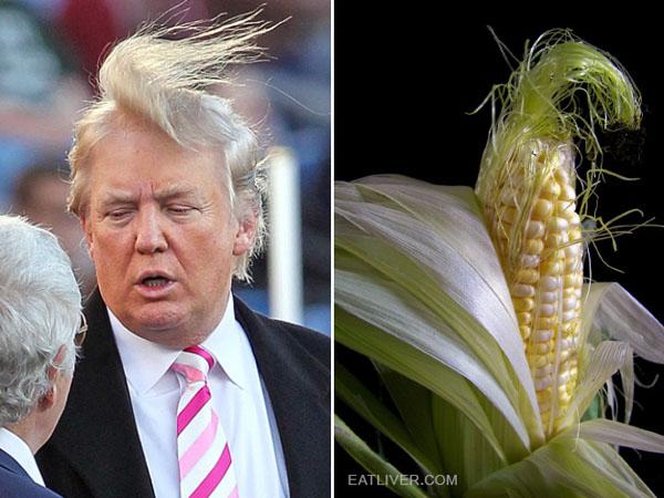 Things-Donald-Trump-looks-like-09