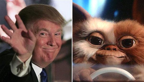 Things-Donald-Trump-looks-like-14