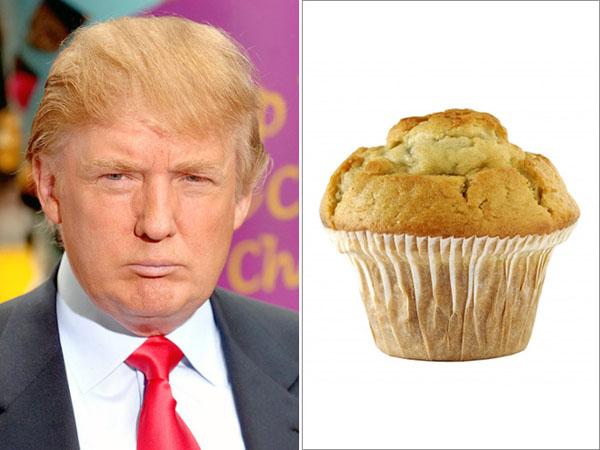 Things-Donald-Trump-looks-like-17