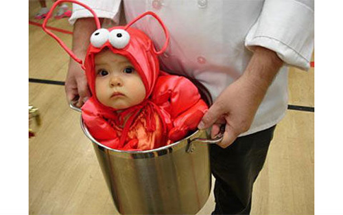 baby-carrier-lobster-pot