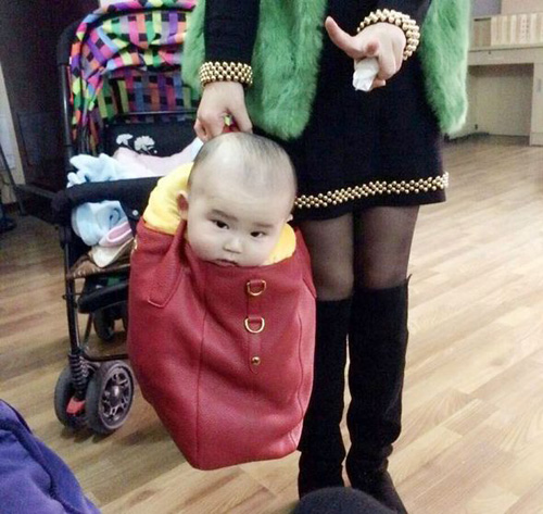 baby-carrier-purse-baby