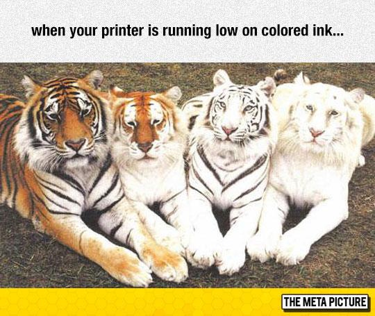 Printer Running Low On Ink