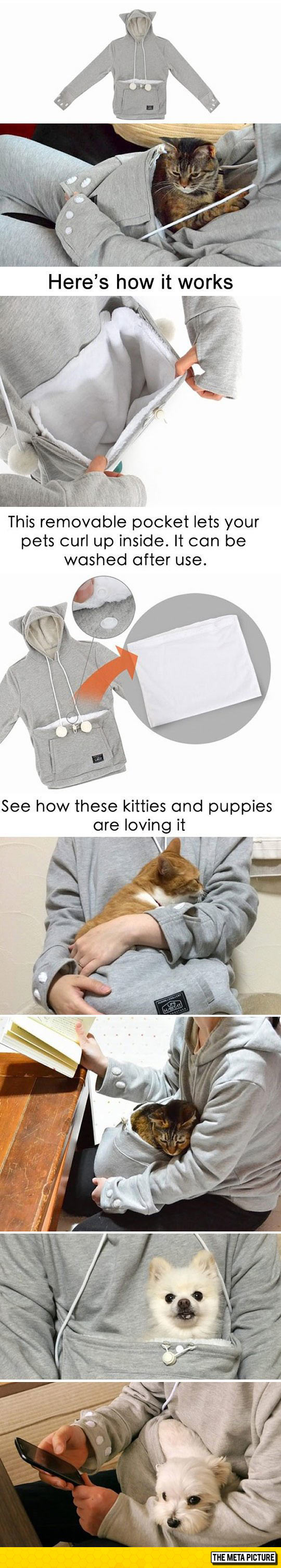 cool-hoodie-for-pets-cats-dogs