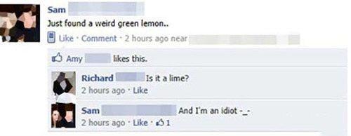 dumb-facebook-lemon-1