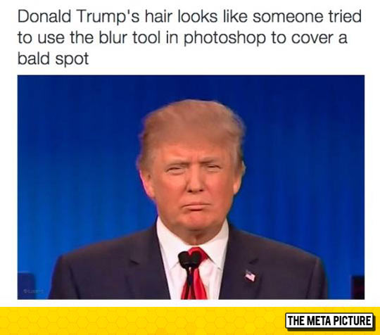 funny-Donald-Trump-hair-photoshop