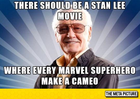 funny-Stan-Lee-cameo-movie-meme