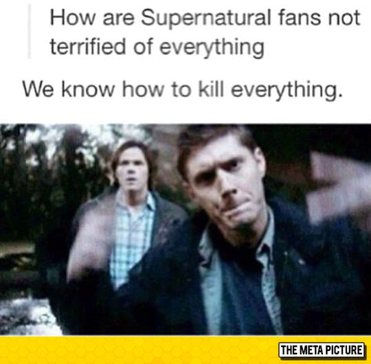 Years Of Supernatural Finally Pay Off